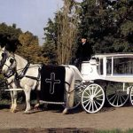 Horse Drawn White Hearse